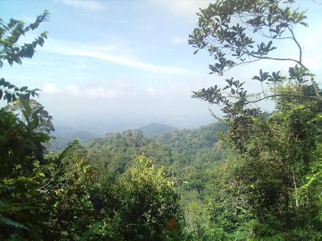 gunungpulaijohor4